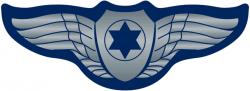 IAF_Pilot_Wings_(CGI_version)